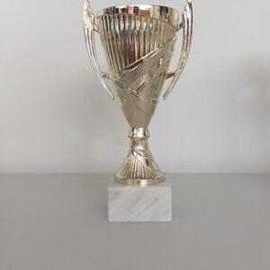 Κύπελλο Μικρής Κατηγορίας 8